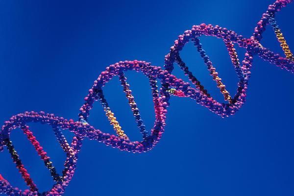 Doppia Elica di DNA