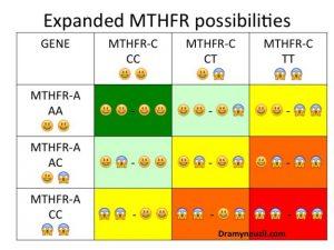 Varianti dei polimorfismi MTHFR
