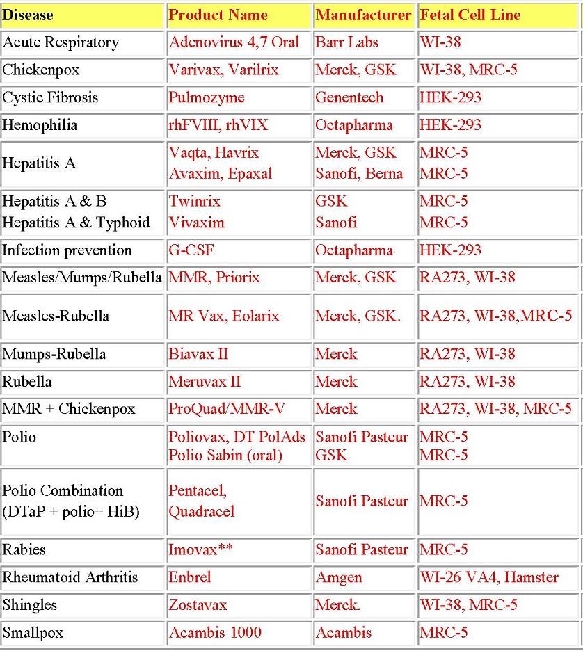 Linee Cellulari Fetali Umane Vaccini