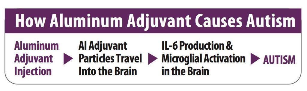 How Aluminum (Alluminio) Adjuvant Causes Autism