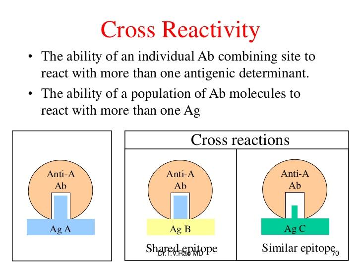 Antigeni e cross-reattività