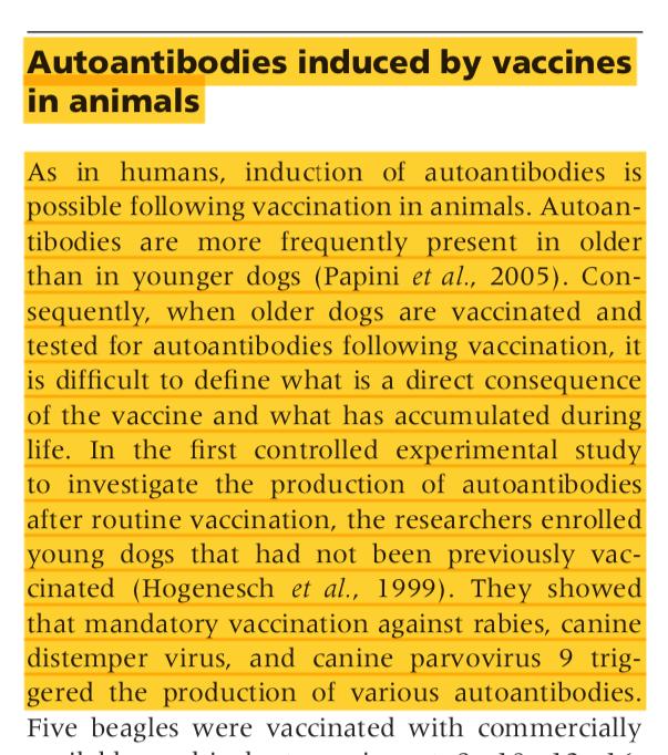 Autoanticorpi indotti dalle vaccinazioni nei cani